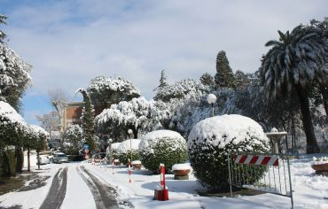 Nevicata del 26 Febbraio 2018